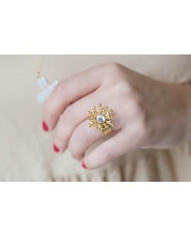 Fornitura anillo